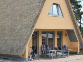 Modern und stilvoll eingerichtetes Ferienhaus-DD27, Loddin