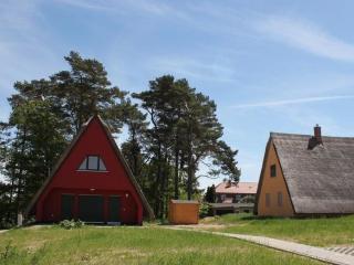 Reetgedecktes Ferienhaus mit Süd-Terrasse - DD26, Loddin