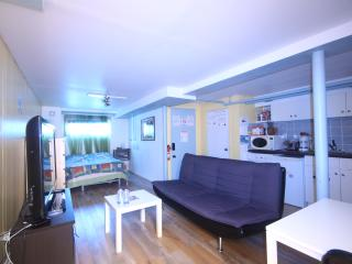 Studio 15 minutes from downtown, Montreal