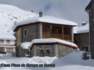 Casa Picos de Europa en Burón, Buron