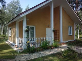 Russia long term rentals in Central Russia, Zadonsk