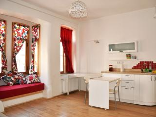 A lovely, Modern, 1bd Apt in Centeral Neighborhood, Estambul