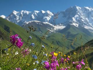 Studio de vacances Ski contemporain dans les 3 vallées, Brides-les-Bains