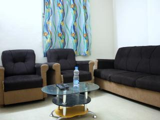 1BHK Fully Furnished Apartment in BTM Layout, Bangalore