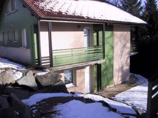 Gérardmer 40m² dans châlet piscine proche centre