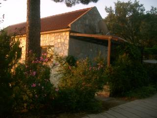 MOUNTAIN ONE BEDROOM HOUSE 1200 M HEIGHT