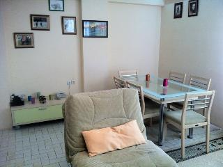 Alanya flat for rent in center