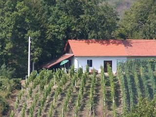 Charmante wijnboerderij - Kroatie