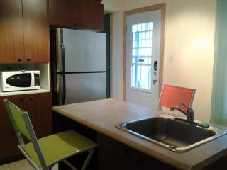 New 1bedroom apt in Old Quebec, wi-fi, sleeps 2