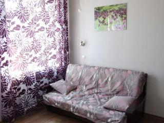 Nice furnished apartment for short stay in Kharkiv, Járkov