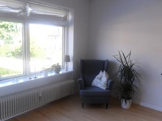 Large and cosy Copenhagen apartment