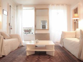 Très beau appartement Parisien de 90m2