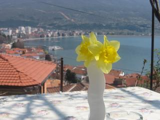 Villa Saraj, Ohrid