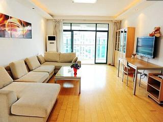 Comfortable 3 Bedroom Apt, Shanghái