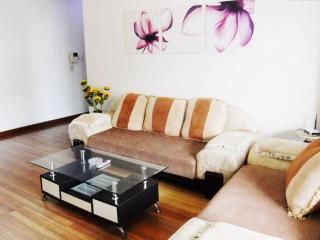 Luxury 3-bedroom apartment, Shanghái