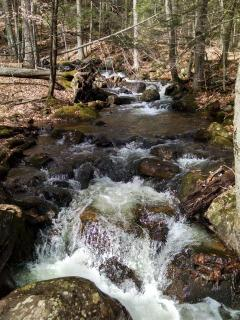 Falls Brook going by the yurt offers fresh, spring fed water