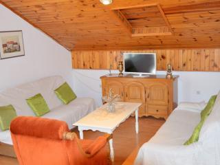 Cheap, spacious apartment Mira