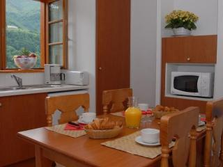 Apart. for 4 people for skiing, hiking or thalasso, Cauterets