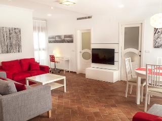 Apartamento Terraza - Boix calle. VLC Ciudad Vieja, Valencia
