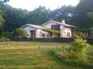 House with pool in large gardens 10 min from beach, Vensac