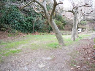 455 - Casa rústica en medio de la naturaleza!, La Selva del Camp