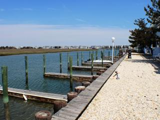 Royal Bay Condo 11 - Spacious Bayfront!, Avalon
