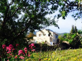 Provence on a vineyard and by the sea, Saint-Cyr-sur-Mer