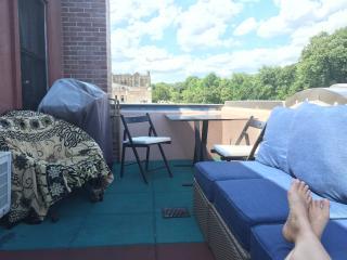 Sunny Duplex on Prospect Park