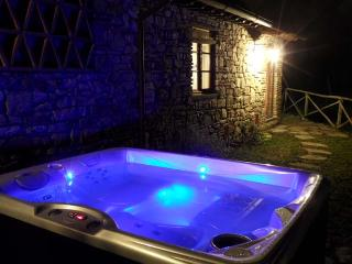 Cottage with Jacuzzi close to Florence, San Casciano in Val di Pesa