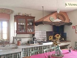 Chianti Classico Farmhouse near Firenze, San Casciano in Val di Pesa