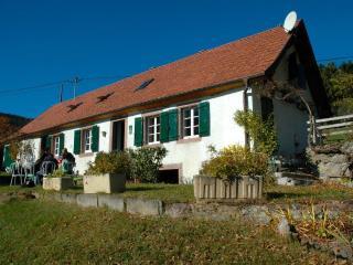 Maison de 140 m² sur la route des vins 8/9 pers, Thannenkirch