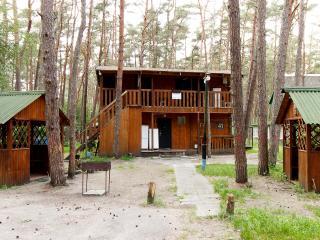 У Галины. Несколько домиков в сосновом лесу, Lesnoye