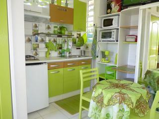 PROMO bungalow jardin univers + WIFI, Petit-Bourg