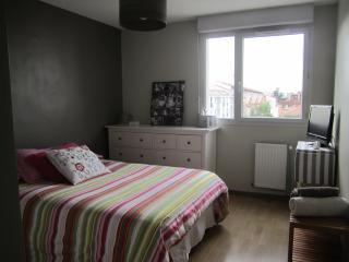 Superbe appartement lumineux, Toulouse