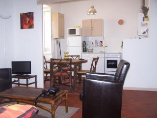 Avignon Intramuros Appartement T2