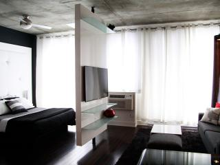 Perfectly stylish condo downtown !, Montreal