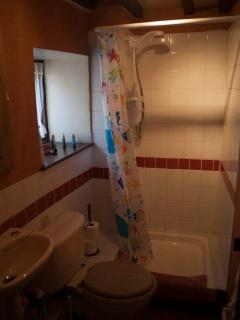 Shower room with electric shower and toilet.