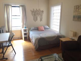 Spacious studio 1 block from train!, Chicago