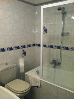 Modern bathroom adjacent the bedroom