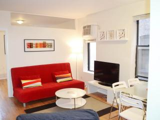 CHIC,MODERN, LARGE 2 BEDROOM, AMAZING PRICE, New York
