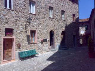 proprietario, Castelnuovo di Val di Cecina