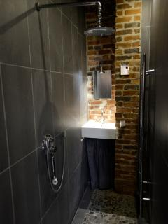 The scandinavian style open-space bathroom.