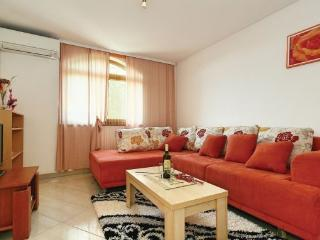Air Conditioned apartment Kanegra Mudric 4+2 Wifi, Umag