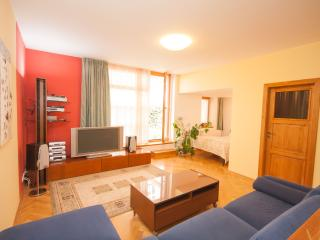 Bilkova Loft 4BR with terrace (Prague Old Town)