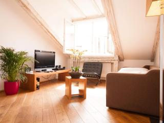 Kozna Loft D 2-Bedrooms apartment (Prague Old Town)
