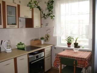 Budget 1 Bedroom Flat in green district, Riga