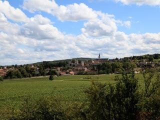BEAUNE, AMAZING VIEW IN THE VINE, Rully