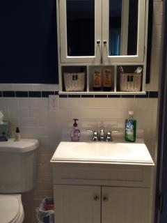Master #1 bath - 3 piece with fully redone shower.