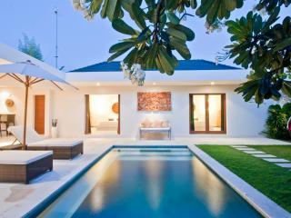 4 Bedroom -Villa Umah Kupu Kupu - Central Seminyak