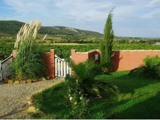 Villa Provençale au Coeur du Vignoble Corbières